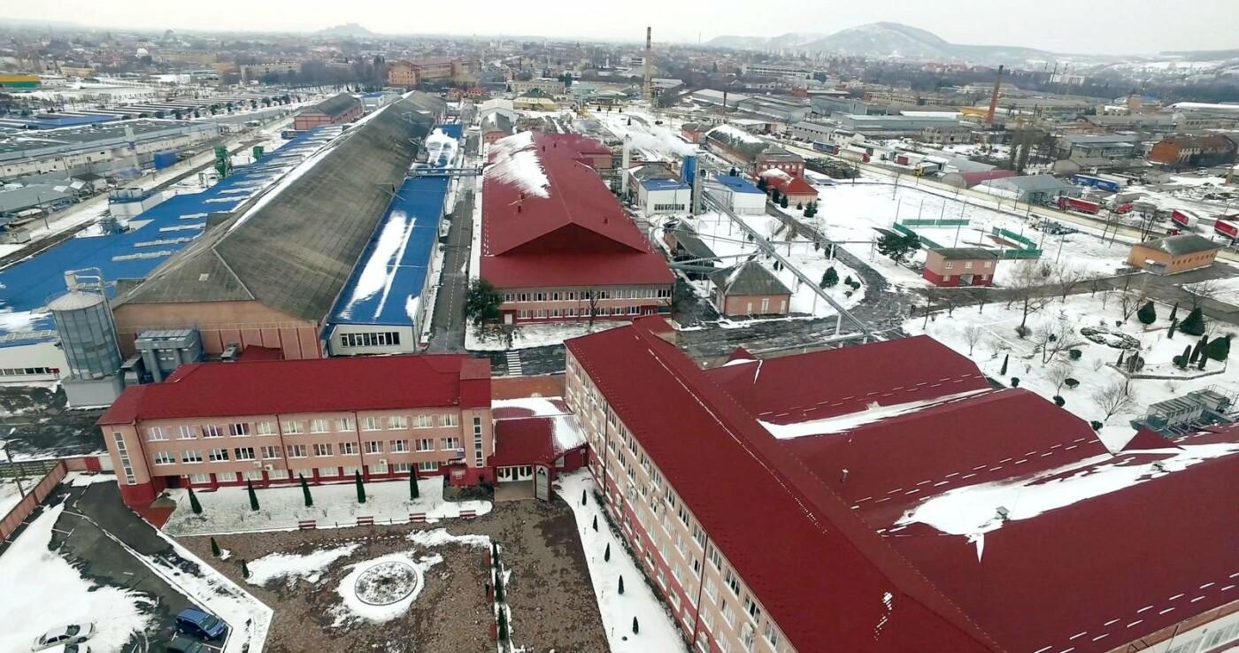 Зроблено на Закарпатті: лижі з Мукачева заполонили ЄС і принесли олімпійцям 89 медалей у Пхьончхані (ФОТО, ВІДЕО), фото-5