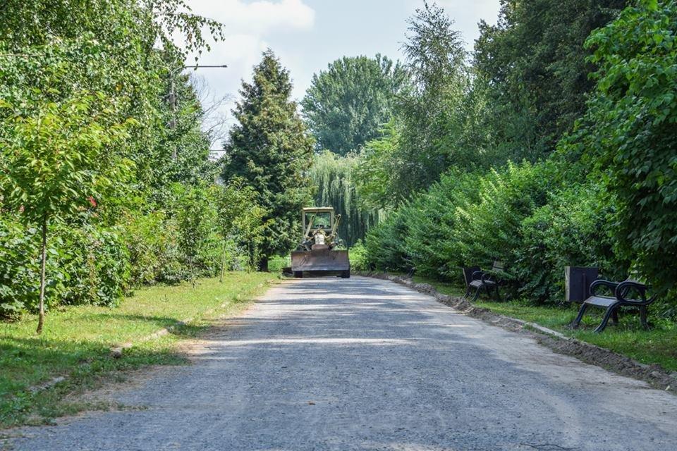 Рівні доріжки, оновлений понтонний міст: у Боздоському парку Ужгорода розпочались ремонтні роботи (ФОТО), фото-4