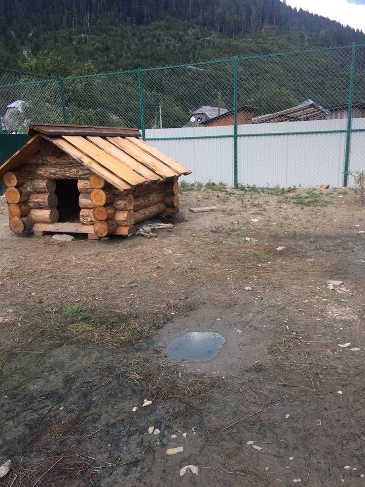 Соцмережі: туристи зафіксували жахливі умови перебування вовків в екопарку на Міжгірщині (ФОТО), фото-4