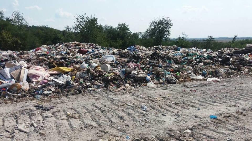 """ТОВ """"АВЕ Ужгород"""" назвало причини перебоїв у вивезенні сміття в місті (ФОТО), фото-1"""