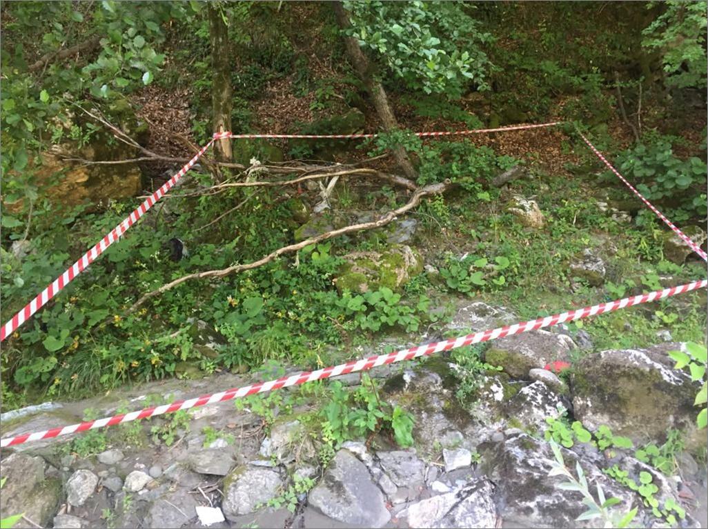 На Закарпатті біля кордону з Угорщиною знайдено гранату Ф-1 (ФОТО), фото-1