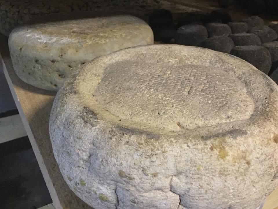 18 серпня містян та туристів запрошують в Ужгородський скансен на дегустацію сирів та вільну кузню (АНОНС), фото-8