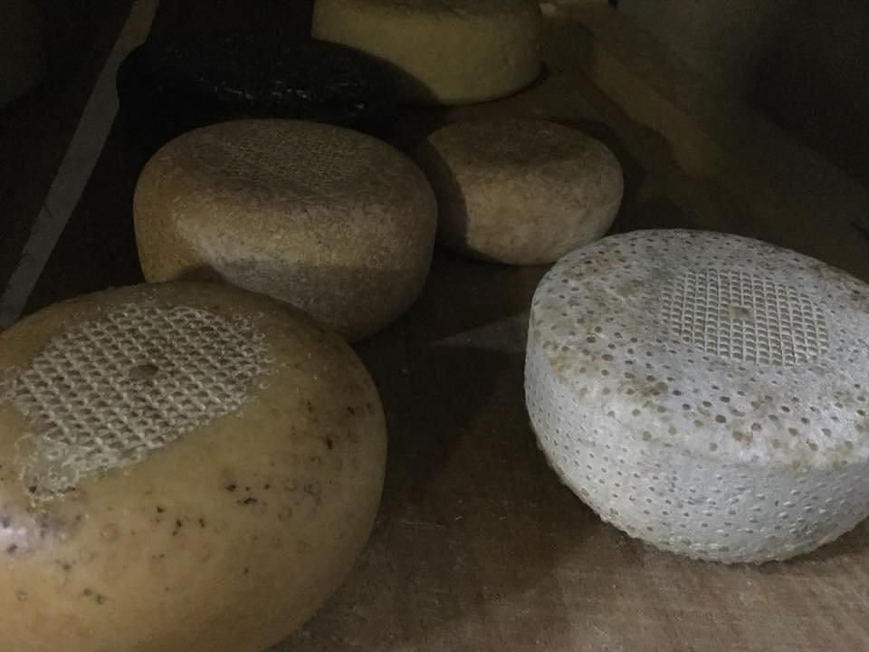 18 серпня містян та туристів запрошують в Ужгородський скансен на дегустацію сирів та вільну кузню (АНОНС), фото-2