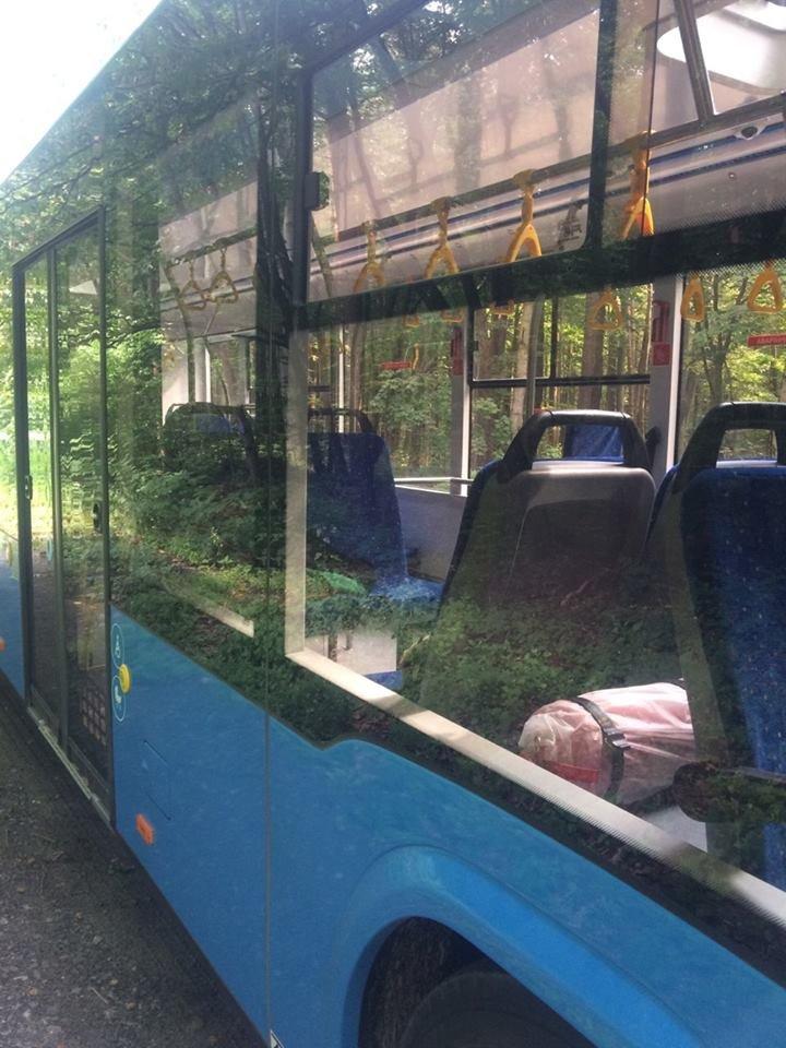 """В Ужгороді через 2 тижні їздитимуть 10 нових автобусів """"Електрон"""" синього кольору (ФОТО), фото-2"""