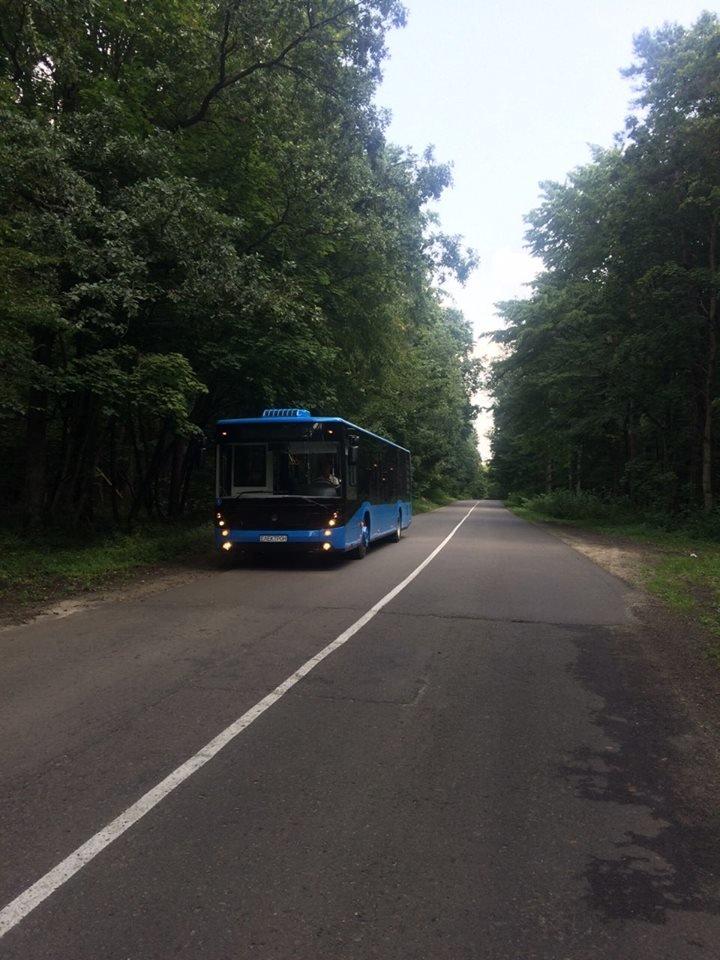 """В Ужгороді через 2 тижні їздитимуть 10 нових автобусів """"Електрон"""" синього кольору (ФОТО), фото-1"""