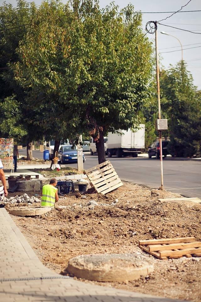 """Мерія сходить з розуму: в Ужгороді біля """"Токіо"""" почали вирубувати здорові дерева (ФОТО) , фото-4"""