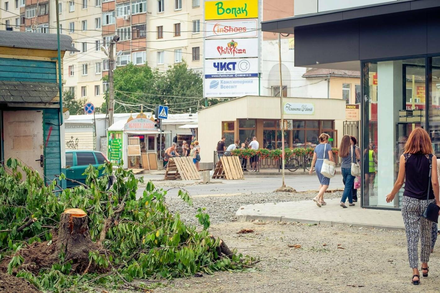 """Мерія сходить з розуму: в Ужгороді біля """"Токіо"""" почали вирубувати здорові дерева (ФОТО) , фото-1"""