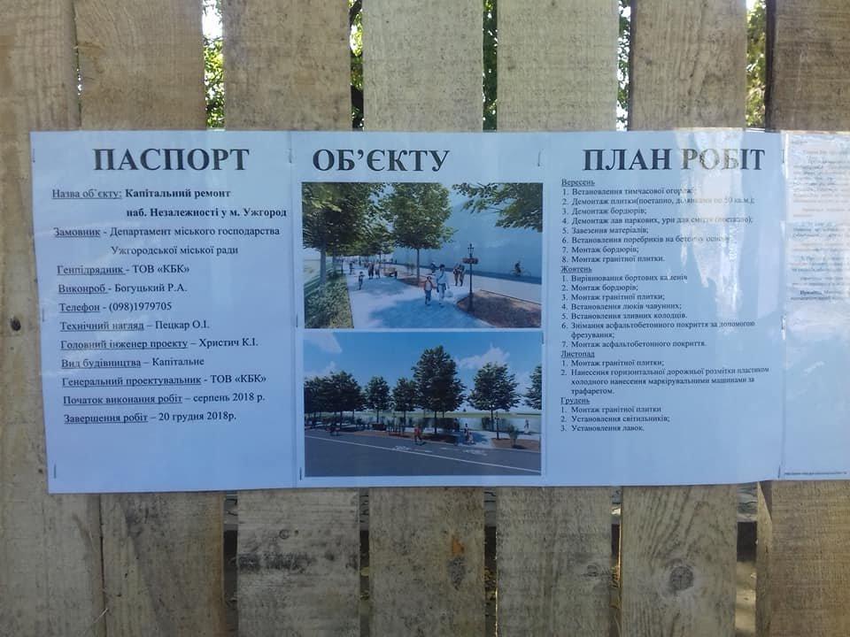 Поліція, спецтехніка та активісти: на набережній Незалежності в Ужгороді знову зупинено роботи (ФОТО, ВІДЕО), фото-16