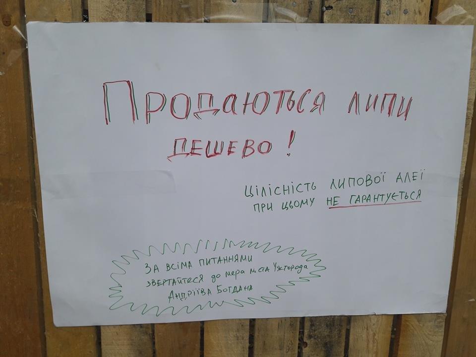 Поліція, спецтехніка та активісти: на набережній Незалежності в Ужгороді знову зупинено роботи (ФОТО, ВІДЕО), фото-7