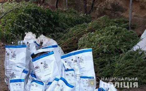 Поліція оголосила в розшук 43-річного закарпатця за зберігання наркотиків та боєприпасів (ФОТО), фото-4