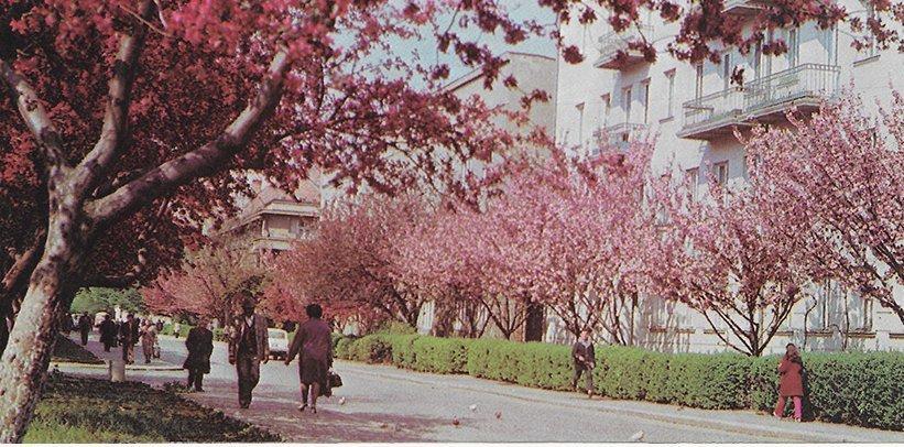 Подорож у минуле: як виглядав Ужгород 30 років тому (ФОТО), фото-9