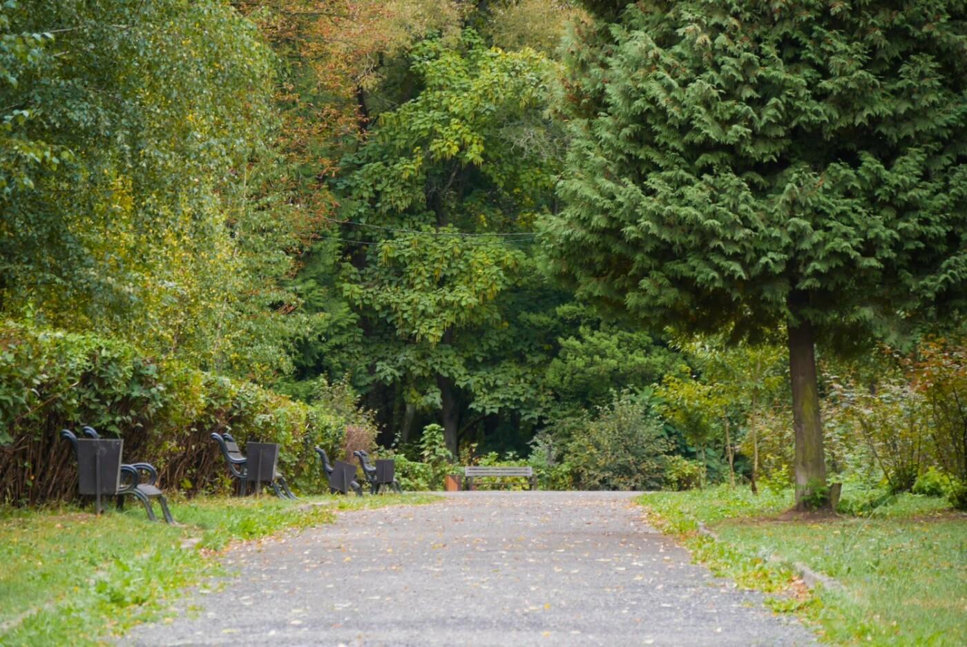 Ще одну алею у Боздоському парку Ужгорода привели до ладу (ФОТО), фото-1