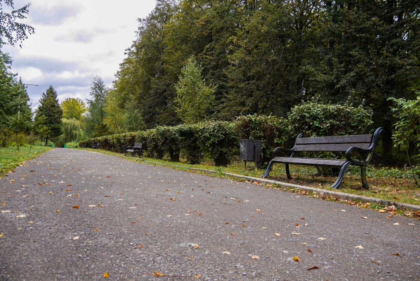 Ще одну алею у Боздоському парку Ужгорода привели до ладу (ФОТО), фото-3