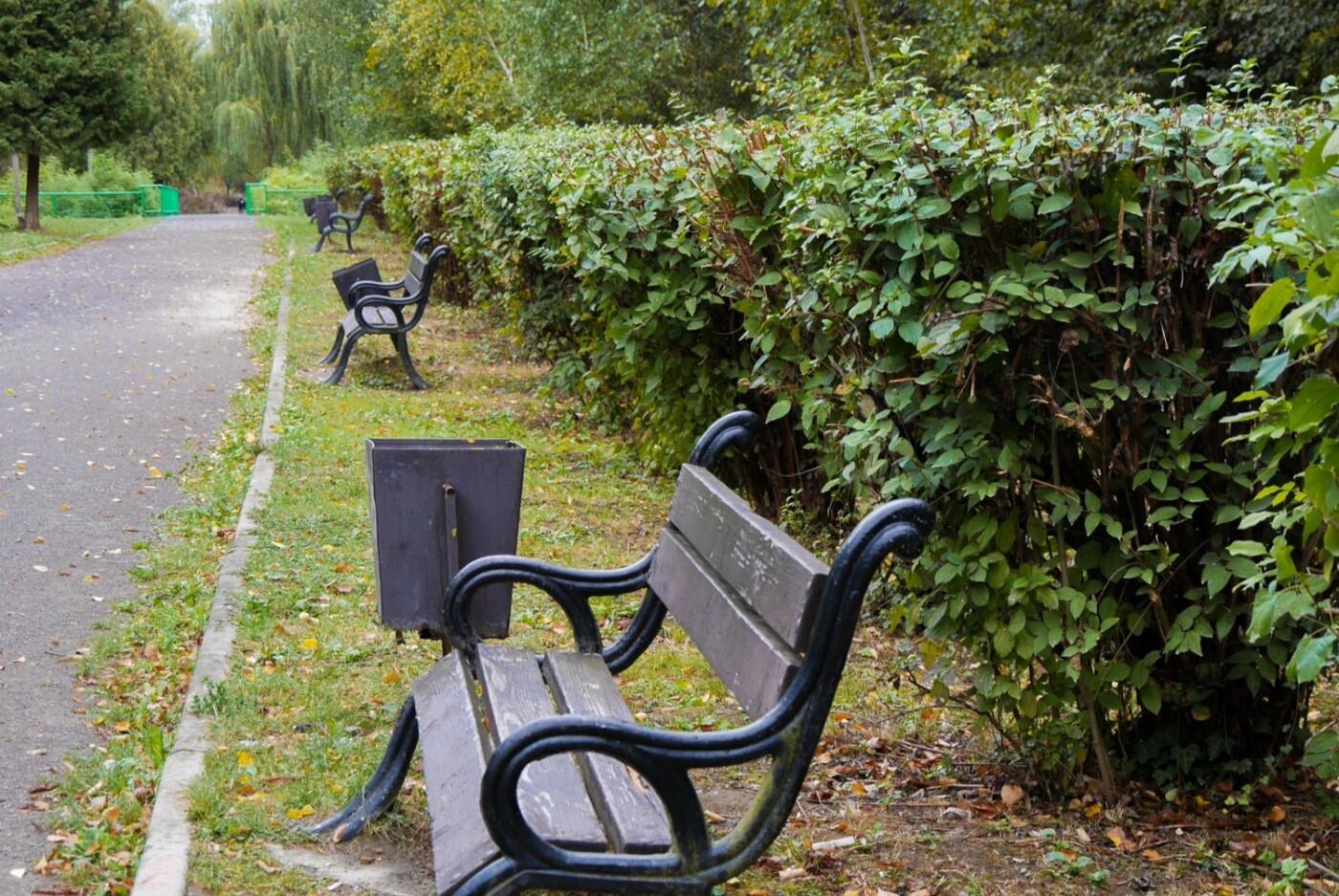 Ще одну алею у Боздоському парку Ужгорода привели до ладу (ФОТО), фото-4