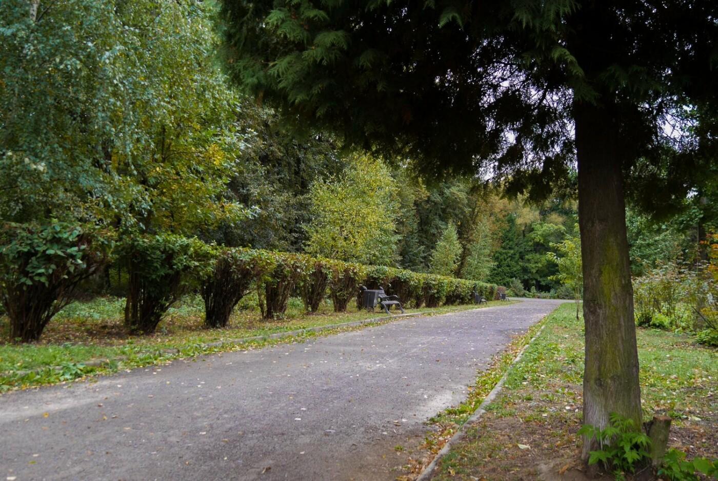 Ще одну алею у Боздоському парку Ужгорода привели до ладу (ФОТО), фото-2