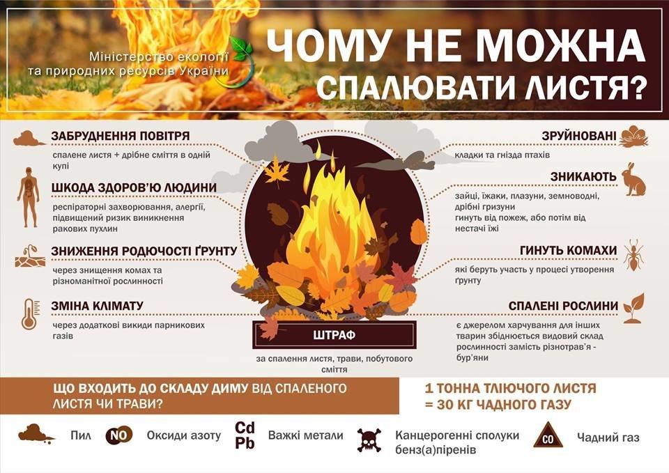 В Ужгороді штрафуватимуть за спалення листя та сухої трави , фото-2