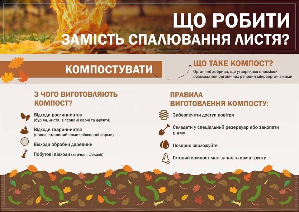 В Ужгороді штрафуватимуть за спалення листя та сухої трави , фото-1
