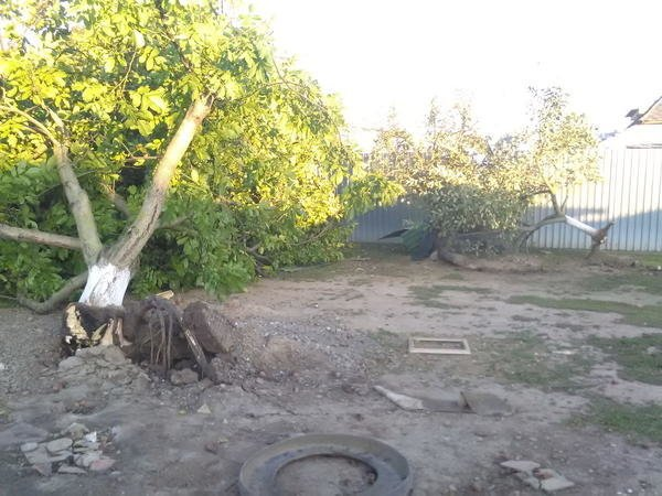 У Словаччині за 5 км від Ужгорода із серйозними наслідками пройшов торнадо (ФОТО, ВІДЕО) , фото-3