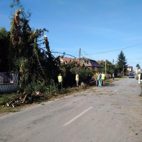 У Словаччині за 5 км від Ужгорода із серйозними наслідками пройшов торнадо (ФОТО, ВІДЕО) , фото-2