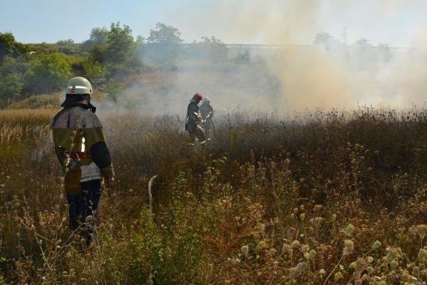 Доспалювалися: В Ужгороді димом від спаленого листя отруїлася дитина, фото-1