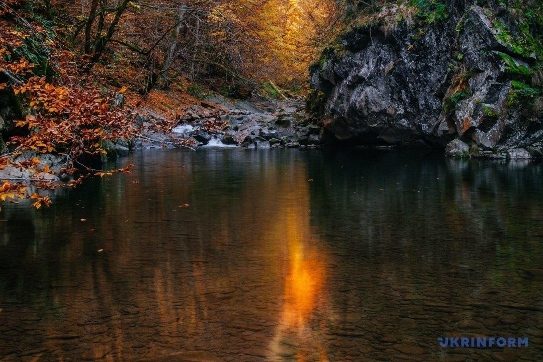 У мережі поділились барвистими фото осіннього закарпатського лісу (ФОТО), фото-2