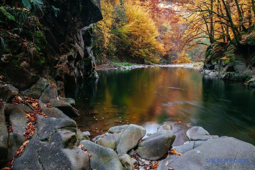 У мережі поділились барвистими фото осіннього закарпатського лісу (ФОТО), фото-5