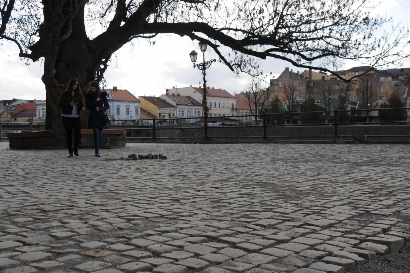 В Ужгороді стартував ремонт однієї з вулиць - заміняють стару бруківку асфальтом (ФОТО, фото-3