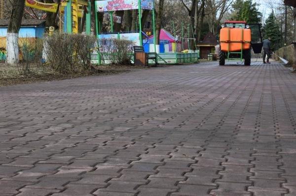 В Ужгороді комунальники розпочали приводити до ладу Боздоський парк (ФОТОФАКТ), фото-5