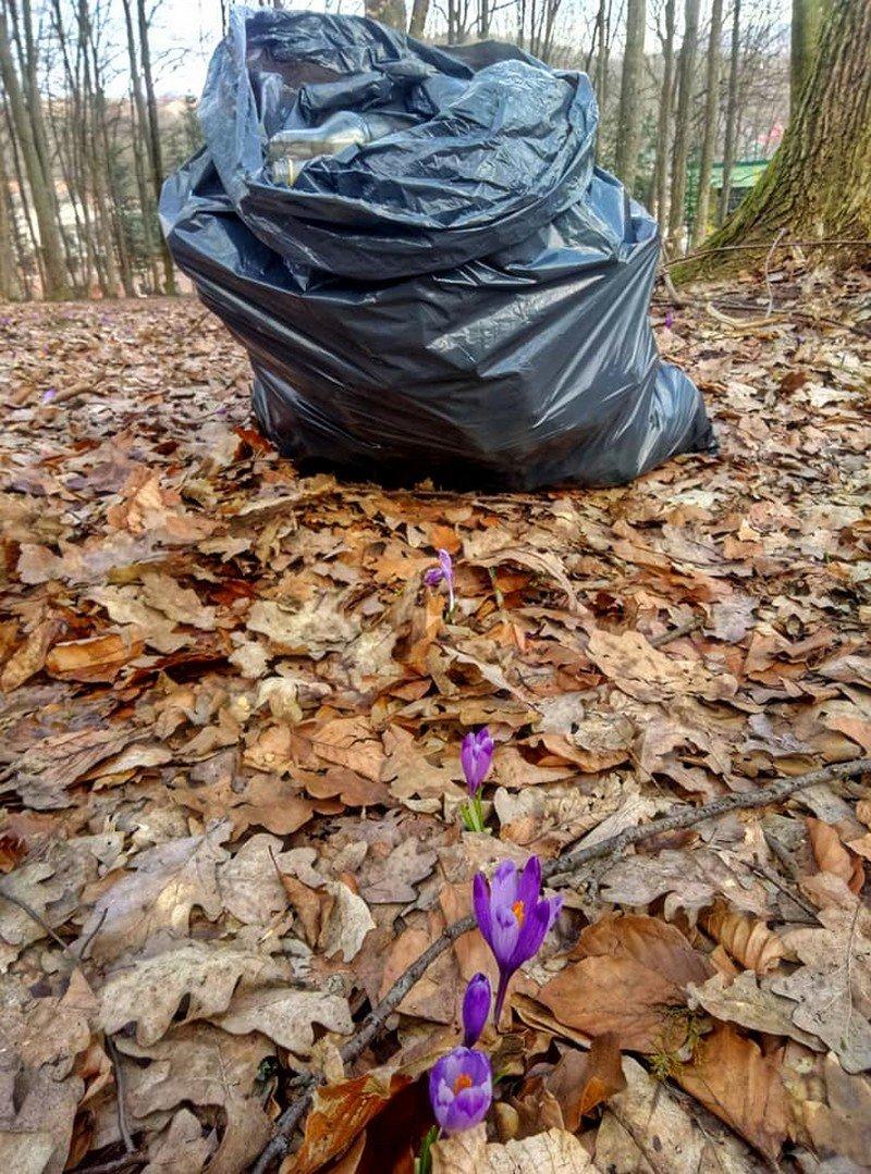 На Закарпатті шафранову долину очищували від сміття (ФОТО), фото-5
