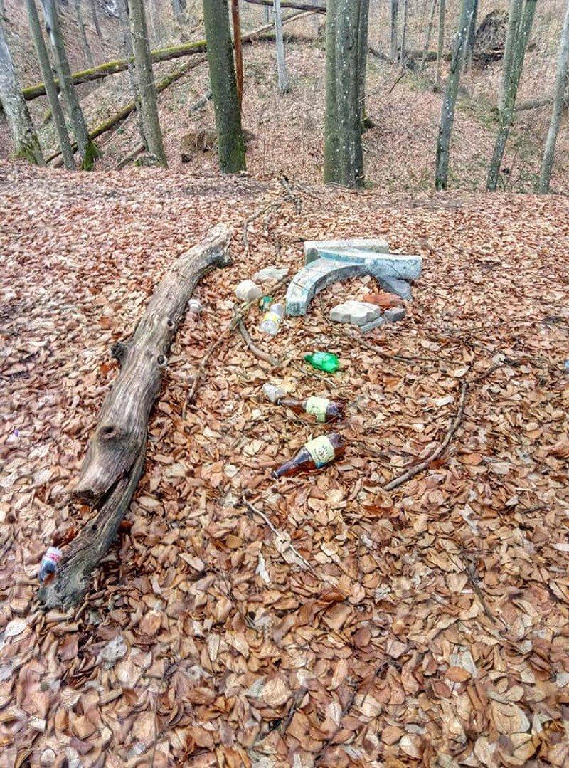 На Закарпатті шафранову долину очищували від сміття (ФОТО), фото-6