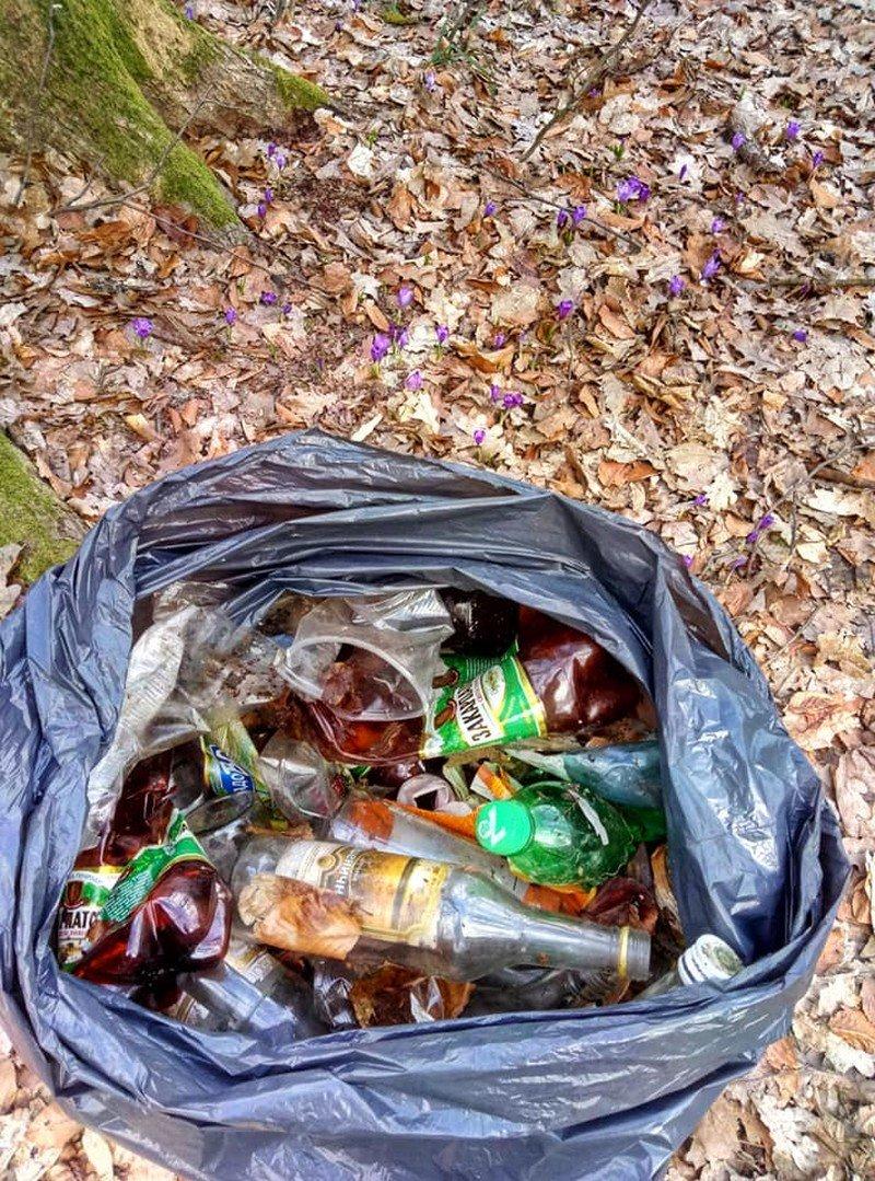 На Закарпатті шафранову долину очищували від сміття (ФОТО), фото-4