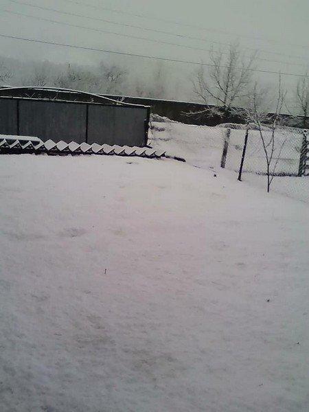 На Закарпатті у кількох районах випав сніг (ФОТОФАКТ), фото-5