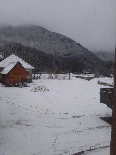 На Закарпатті у кількох районах випав сніг (ФОТОФАКТ), фото-4