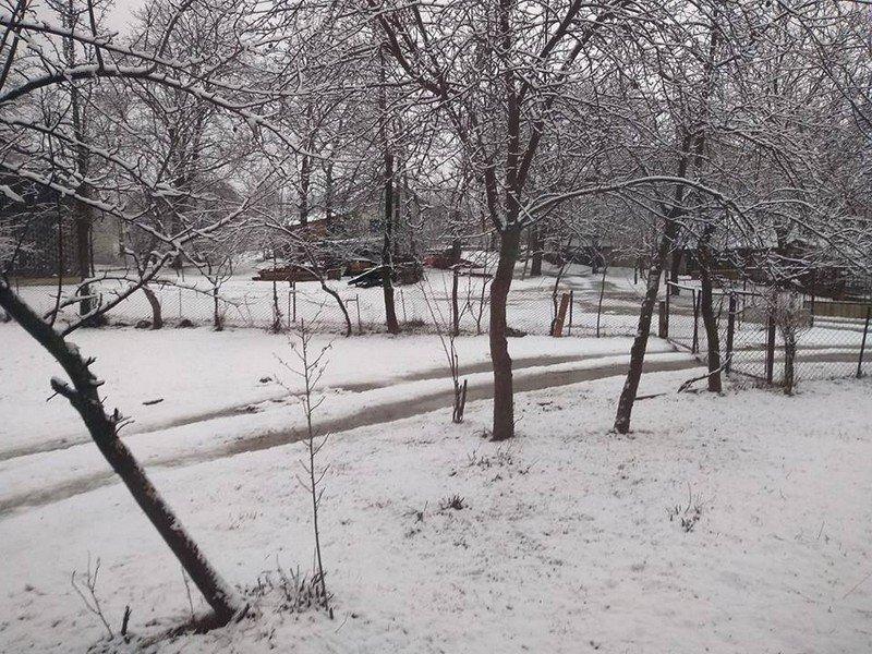 На Закарпатті у кількох районах випав сніг (ФОТОФАКТ), фото-7