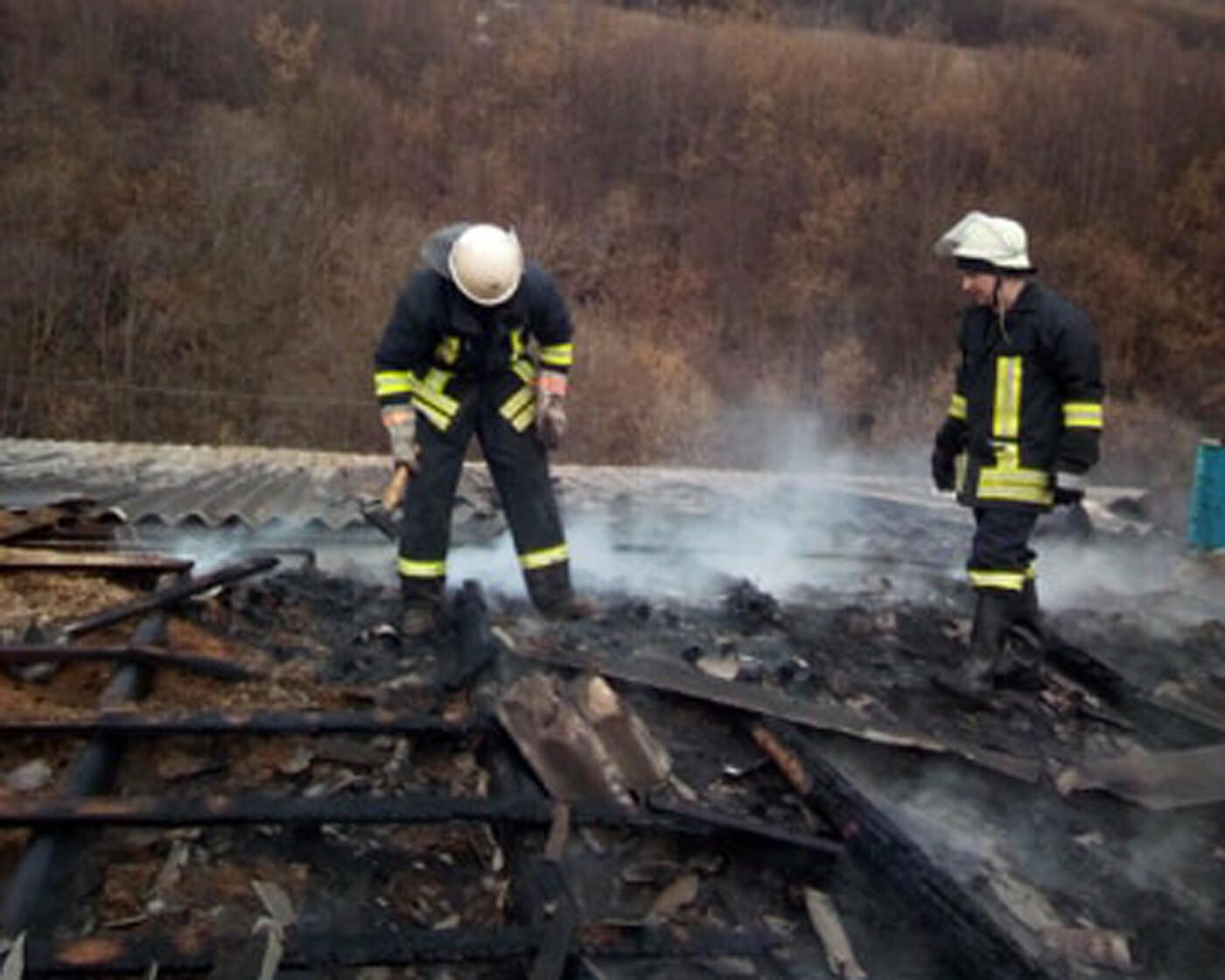 Закарпатські вогнеборці врятували від пожежі цех для вирoбництва паливних брикетів (ФОТО), фото-2