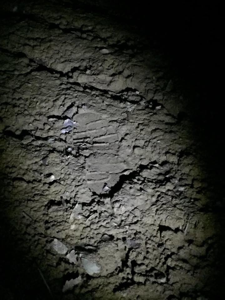 Під Ужгородом біля кордону затримали турка, який вночі прямував до Словаччини (ФОТО), фото-3