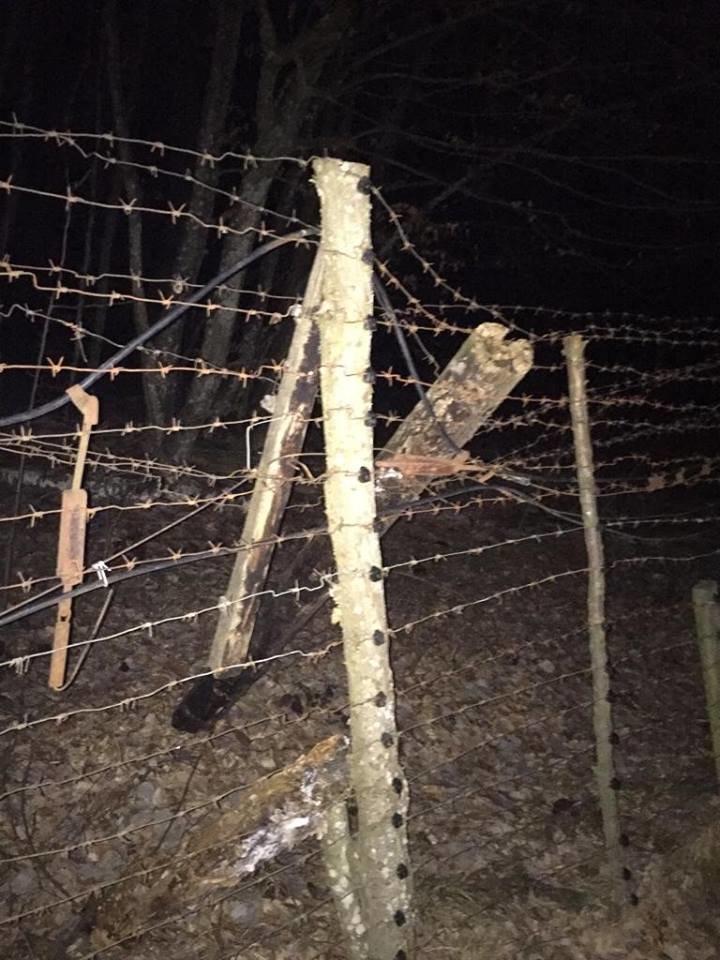 Під Ужгородом біля кордону затримали турка, який вночі прямував до Словаччини (ФОТО), фото-2