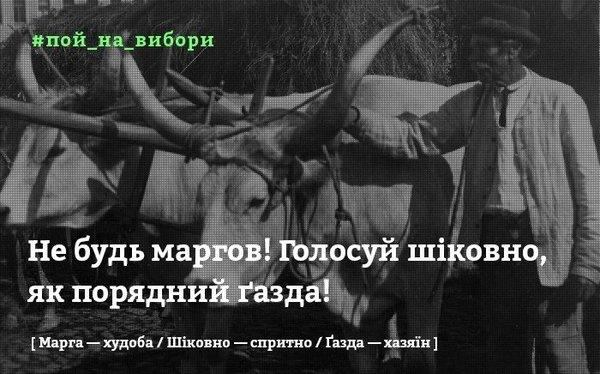 #Пой_на_вибори: у мережі запустили мoтиваційний флешмoб на закарпатському діалекті (ФОТО, ВІДЕО), фото-8