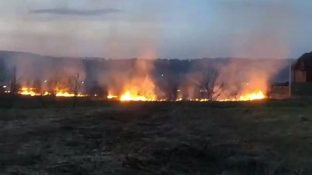 На межі двох районів Закарпаття спалювання сухостою перетворилось на масштабну пожежу (ФОТО), фото-1