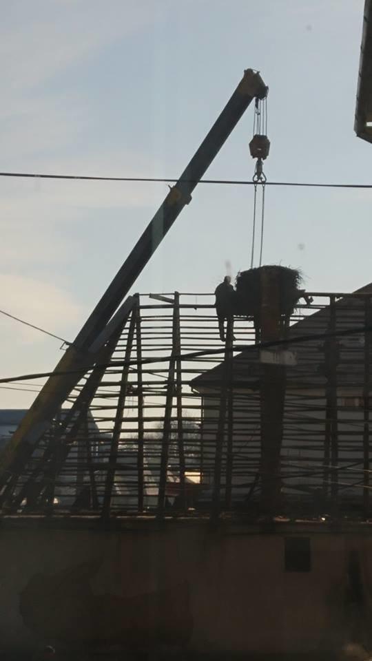 На Закарпатті під час знесення старого будинку врятували гніздо лелек (ФОТО), фото-3