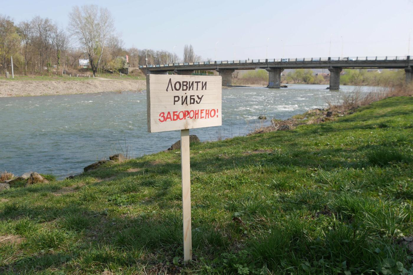 В Ужгороді визначили місця, де заборонено ловити рибу, фото-4
