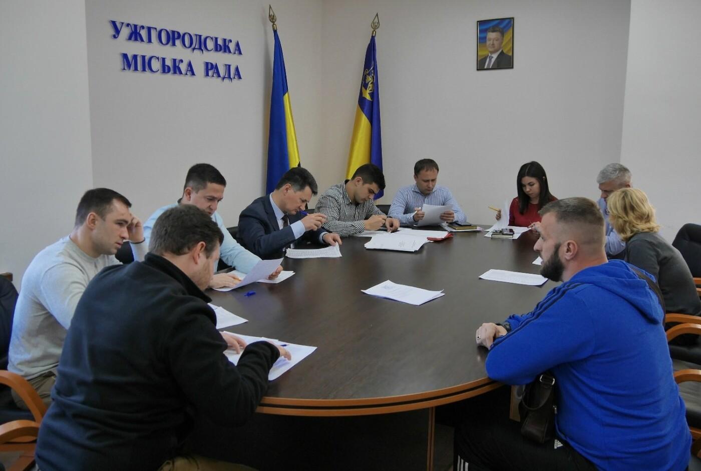 У міськраді Ужгорода розповіли за які порушення 52 ужгородці сплатять штраф, фото-2