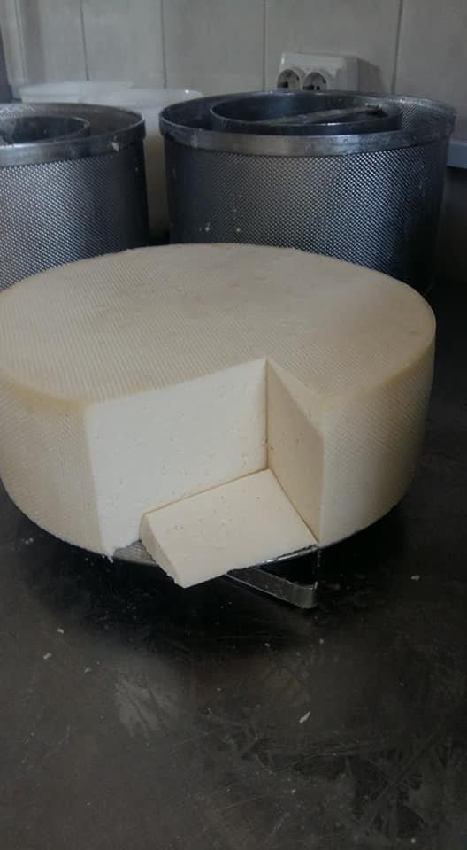 Гастровибух: Закарпатські сировари презентували новий вид сиру (ФОТО), фото-2
