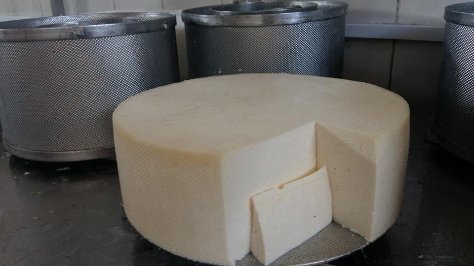 Гастровибух: Закарпатські сировари презентували новий вид сиру (ФОТО), фото-1