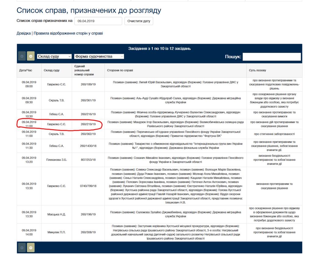 В Ужгородському суді громада Рахівщини захищатиме свою річку від забудови 7 міні-ГЕС, фото-1