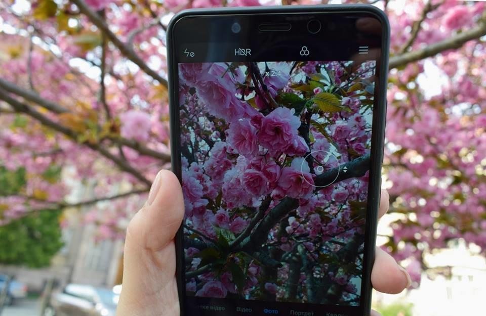 """12 квітня - старт традиційного фестивалю """"Сакура-Фест"""" , фото-9"""