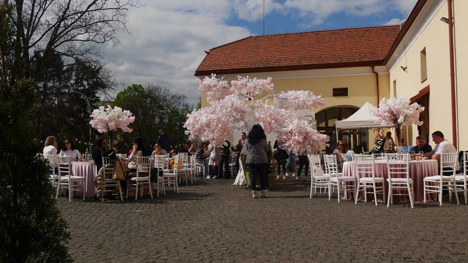 «Sakura Wine»: В Ужгороді розпочався фестивaль рожевого винa (ФОТО), фото-6