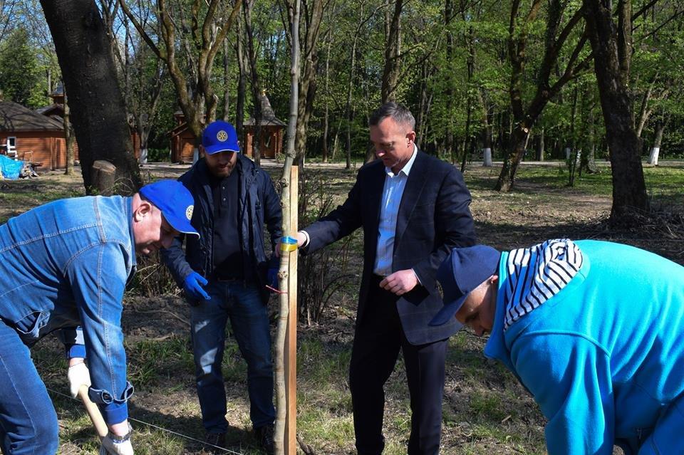 В Боздоському парку в Ужгороді висадили алею платанів (ФОТО), фото-3