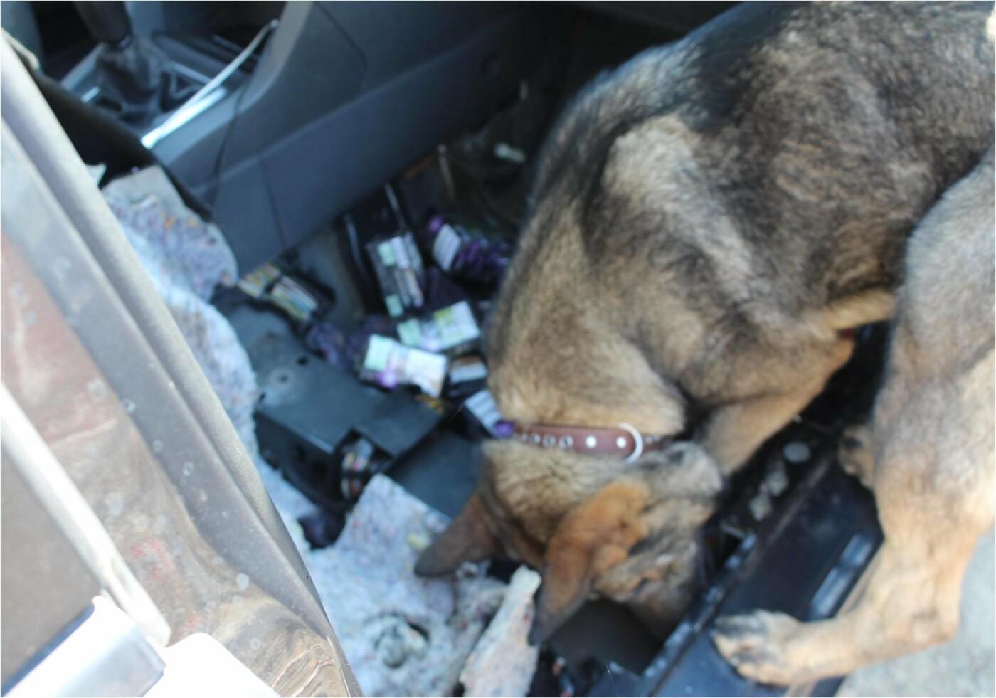 """На КПП """"Вилок"""" водій елітного """"BMW"""" намагався втекти від прикордонників - у чоловіка знайшли цигарки (ФОТО), фото-9"""