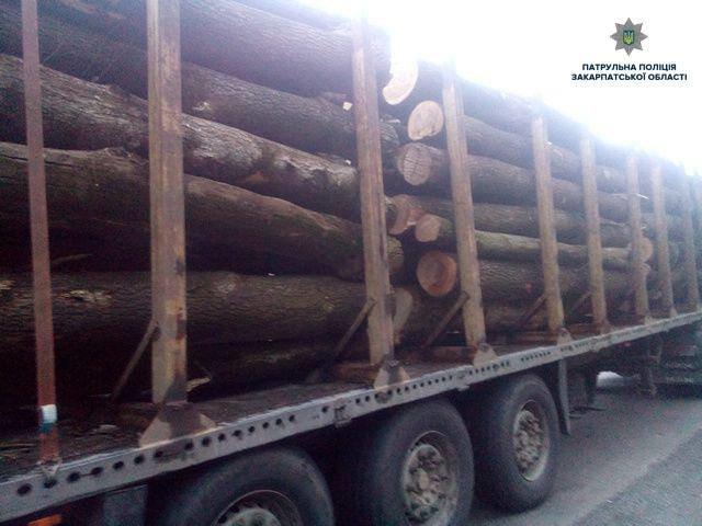 На Закарпатті зупинили вантажівку, що незаконно перевозила деревину (ФОТО), фото-1